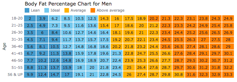 Heat Map chart of body fat percentage for data distribution visualization and analysis
