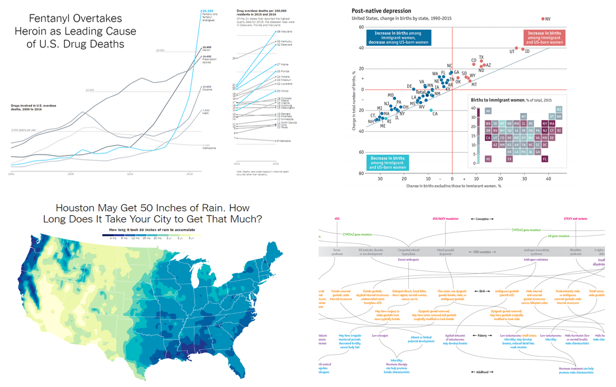 Peculiar Data Visualizations and Infographics in DataViz Weekly