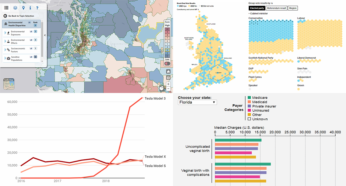 New interesting data visualizations about Tesla sales, Brexit vote, birth costs, health disparities, on DataViz Weekly