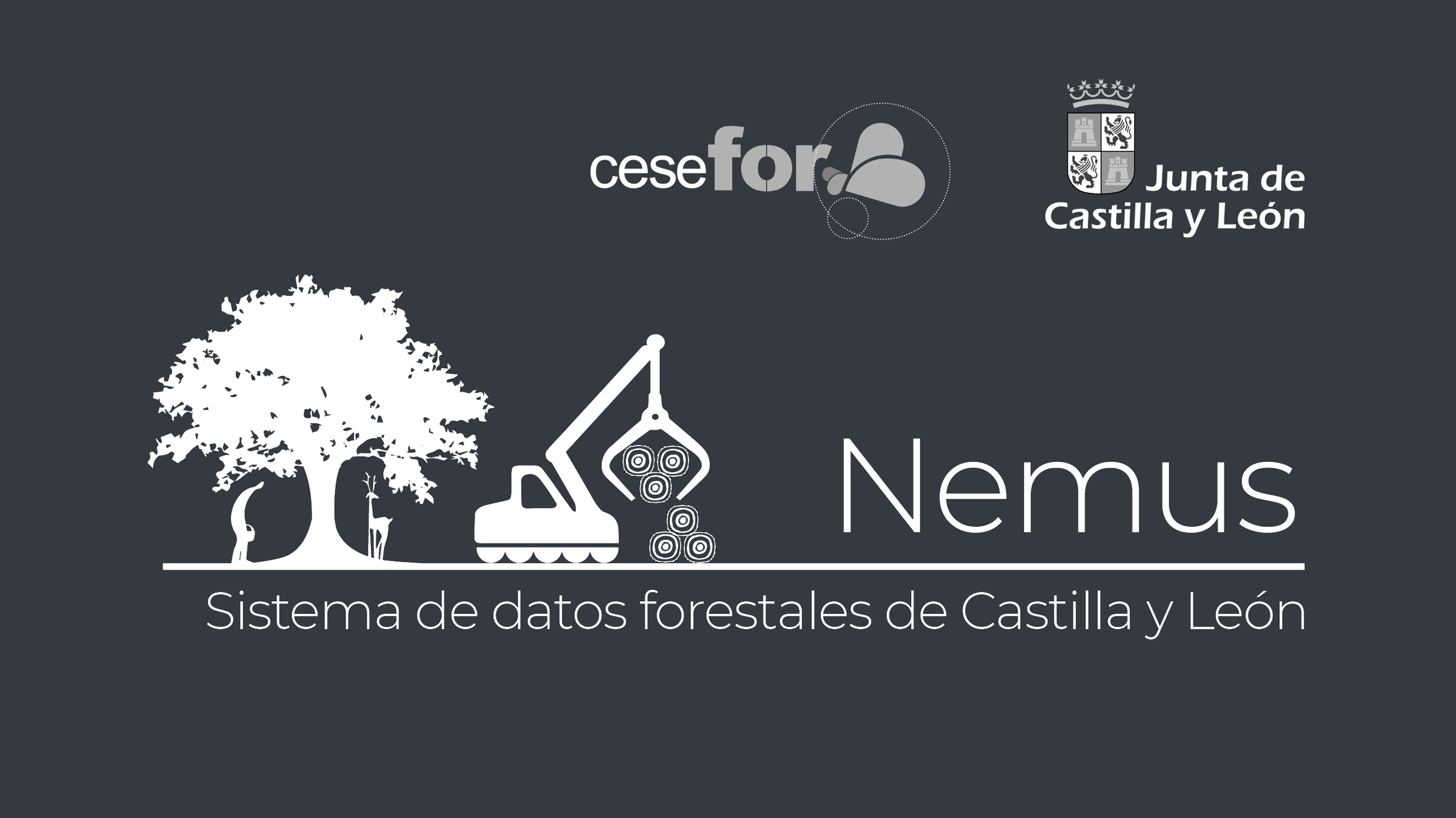 Nemus forestry data visualization system created by Cesefor in cooperation with Regional Government of Castile and Leon