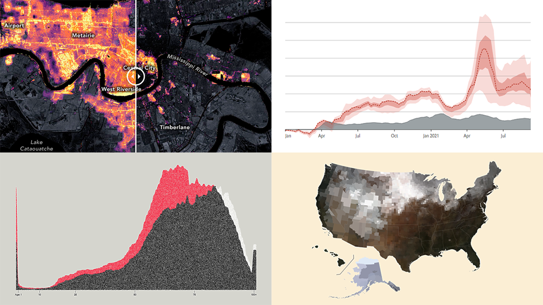 Snapshots of the two new projects visualizing mortality statistics and two new projects visualizing satellite imagery data overviewed in DataViz Weekly